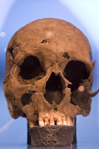 antiker_Schaedel_skull