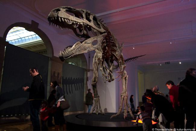 Dinosaurier_Giganotosaurus_Carolinii